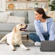 3 Skills To Look For In A Remote Employee